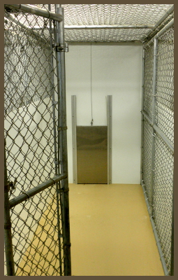 picture showing inside a kennel stall